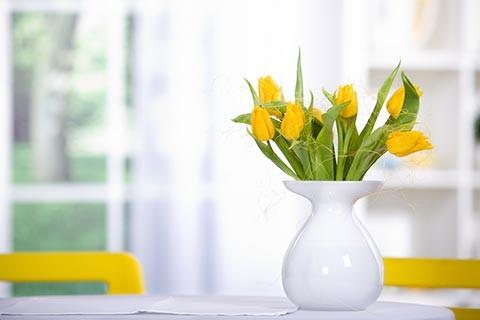spring-flowers-480x320-480x320.jpg
