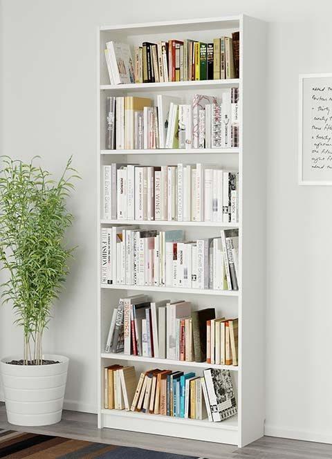 tall-bookshelves-480x664.jpg